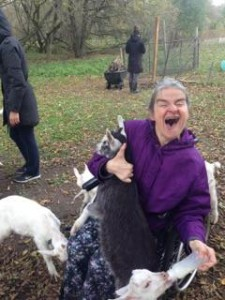 goats 6